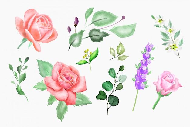 Vintage aquarell florale elemente