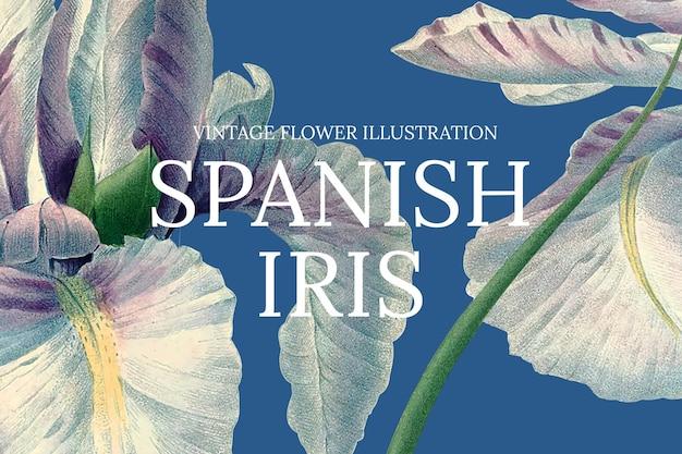 Vintage blumenschablonenillustration mit spanischem iri-hintergrund, neu gemischt von gemeinfreien kunstwerken