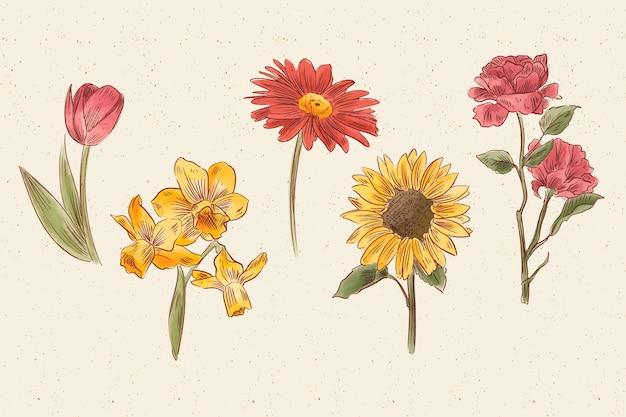 Vintage botanik blumensammlung