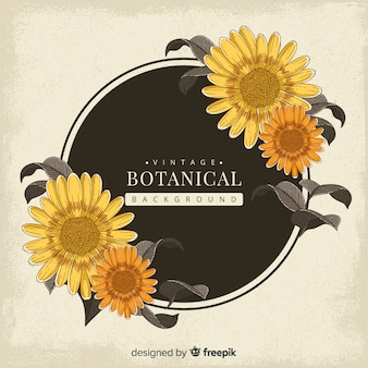 Vintage botanischen hintergrund