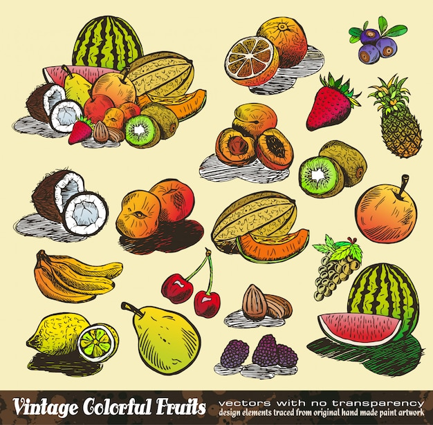 Vintage bunte frucht-sammlung