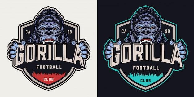 Vintage emblem der fußballmannschaft