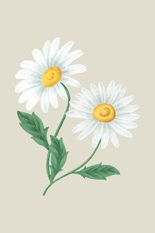 Vintage gänseblümchenblume