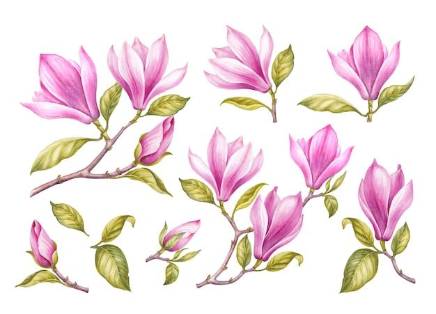 Vintage girlande der blühenden kirschblüte.