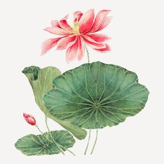 Vintage japanischer lotus-vektor-kunstdruck, remix aus kunstwerken von megata morikaga