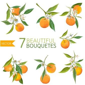 Vintage orangen, blumen und blätter. orangensträuße