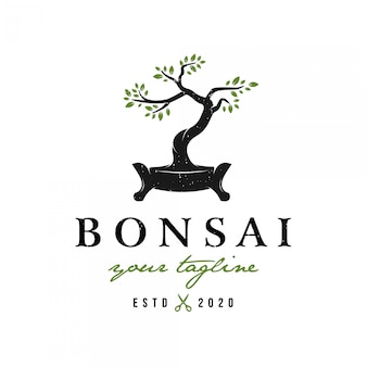 Vintage retro-stil bonsai logo premium