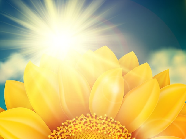 Vintage sommersonnenblume mit wolken. datei enthalten