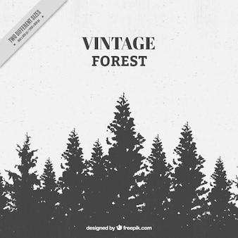 Vintage-wald mit baum silhouetten