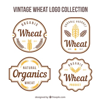Vintage weizen-logo-sammlung