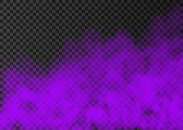 Violetter rauch auf transparentem hintergrund isoliert. dampf-spezialeffekt. realistischer bunter vektorfeuernebel oder nebelbeschaffenheit.