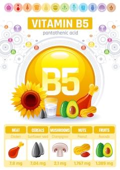 Vitamin b5 lebensmittel infografik poster. design für gesunde nahrungsergänzungsmittel