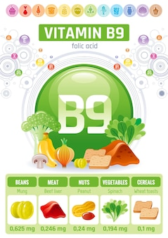 Vitamin b9 folsäure lebensmittel infografik poster. design für gesunde nahrungsergänzungsmittel