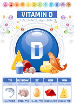 Vitamin d lebensmittel infografik poster. design für gesunde nahrungsergänzungsmittel