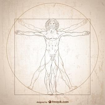 Vitruvian man vektor.