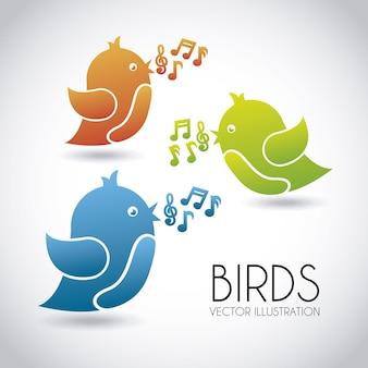 Vögel entwerfen über grauer hintergrundvektorillustration