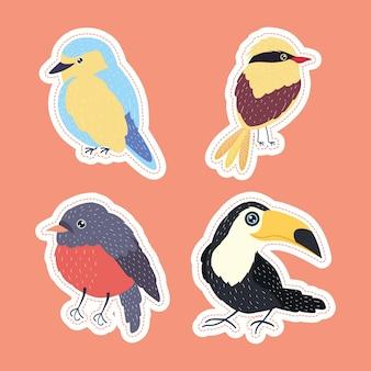 Vögel vier arten setzen tiere