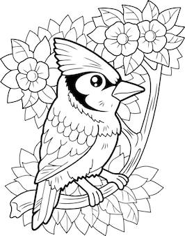Vogel blue jay
