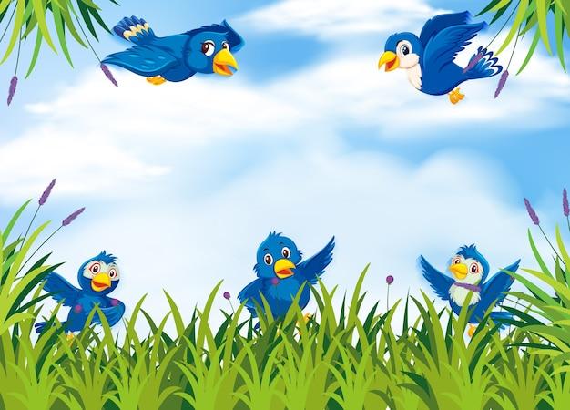 Vogel im naturhintergrund