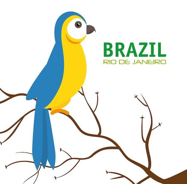 Vogel macaw blau und gelb brasilien