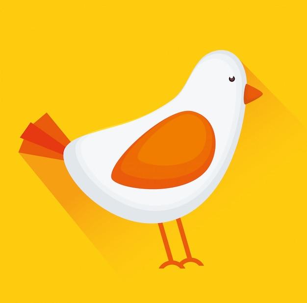Vogel oder birdie tier