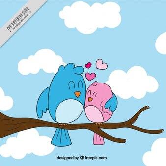 Vogel umarmt seine partner auf einem ast