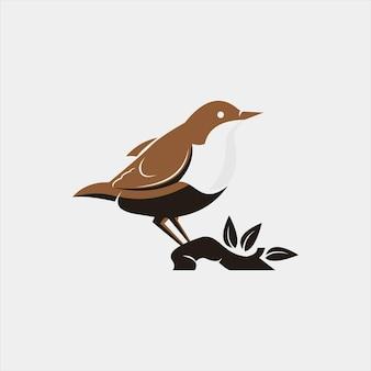 Vogelillustration tierfauna design