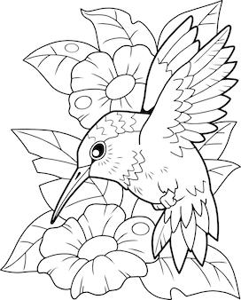 Vogelkolibri