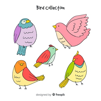 Vogelkollektion