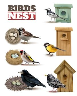 Vogelnest mit bearbeitbaren text und realistischen bildern von vögeln mit wilden nestern und vogelhäuschen gesetzt