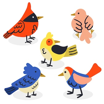 Vogelsammlungszeichnung