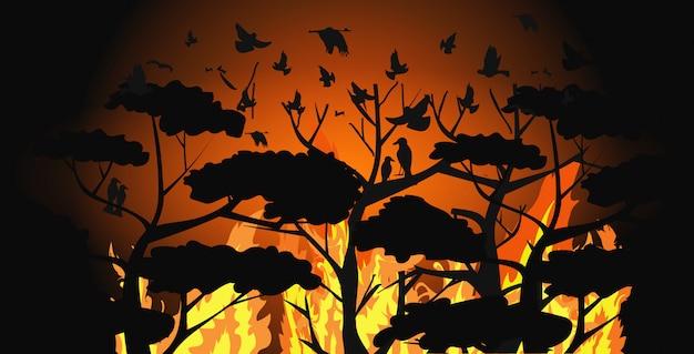 Vogelschattenbilder, die über den wald des verheerenden feuers entgehen bränden in australien-tieren fliegen, die in den intensiven orange horizontalen flammen des konzeptes der naturkatastrophe des buschfeuers sterben