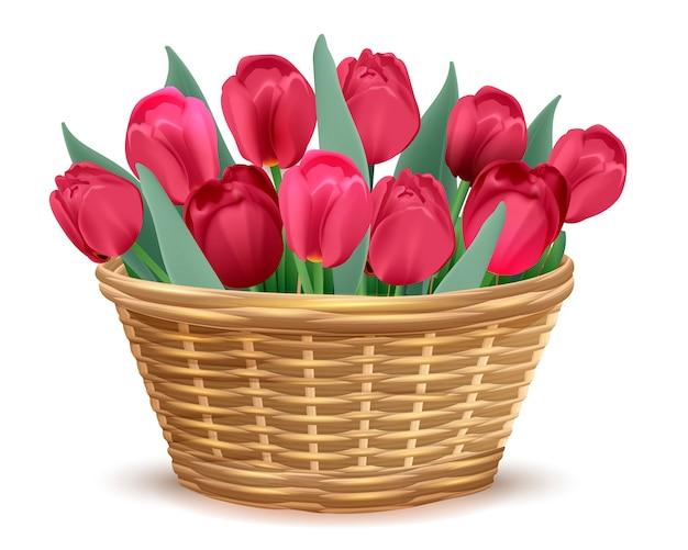 Voller weidenkorb mit roten tulpen