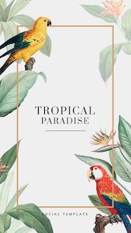 Vorlage für tropische soziale geschichten