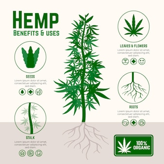 Vorteile von cannabis hanf infografik