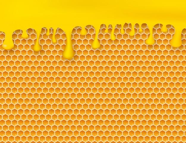 Wabe und honig.