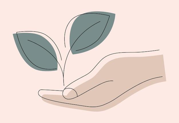 Wachsende blätter in der hand hand geben mit junger pflanze im boden