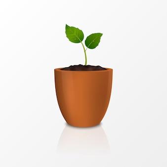 Wachstumskonzept. vorlage der realistischen ikone des sprosses in einem braunen blumentopf, isoliert auf weißem hintergrund