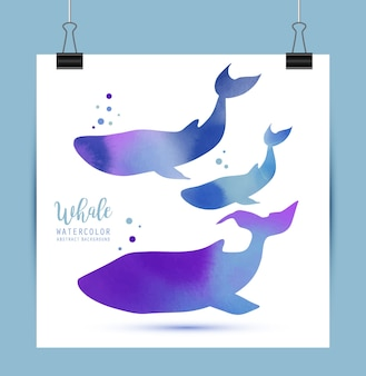 Wal-aquarell-illustration
