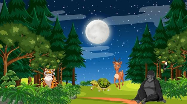 Wald in der nachtszene mit verschiedenen wilden tieren