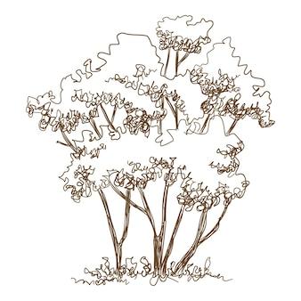 Wald junge bäume symbol. handgezeichnete und skizzenhafte illustration der vektorikone der jungen bäume des waldes für webdesign