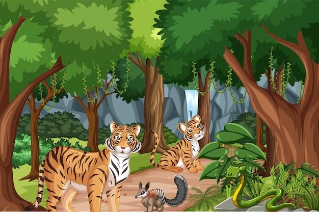 Wald- oder regenwaldszene mit tigerfamilie