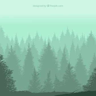 Wald silhouetten