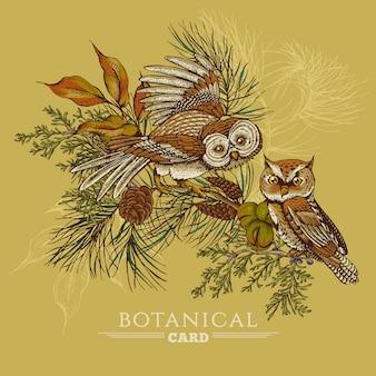 Waldgrußkarte mit eulen, fichte und tannenzapfen