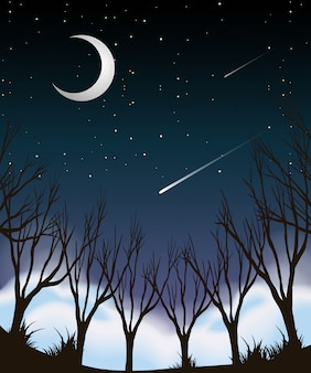 Waldlandschaft am nachthimmel