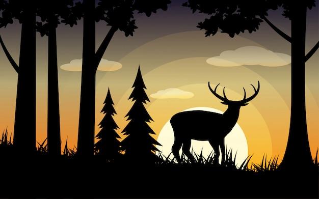 Waldnaturhintergrund mit hirsch im wald