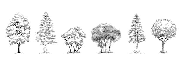 Waldparkbäume symbole gesetzt. umreißen sie handgezeichneten satz von waldparkbäumen vektorsymbolen für das webdesign isoliert auf weißem hintergrund