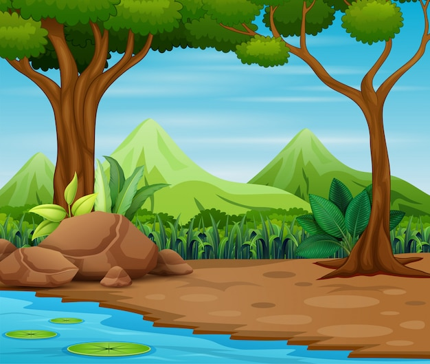 Waldszene mit bäumen und schöner landschaft