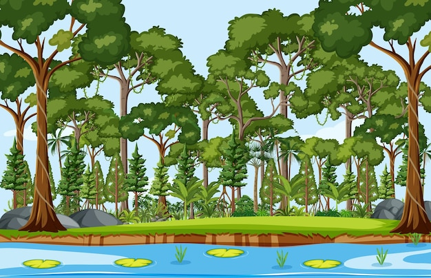Waldszene mit teich und vielen bäumen