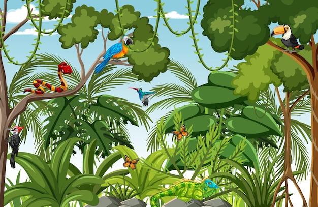 Waldszene mit vielen bäumen und wildtieren